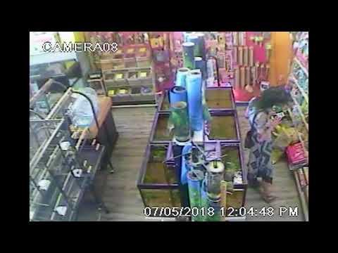Woman stole $500 bird from Destrehan pet shop: sheriff