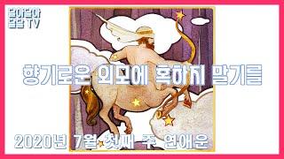 [달달TV] 주간운세 별자리 연애운 7월 1주차 6.2…