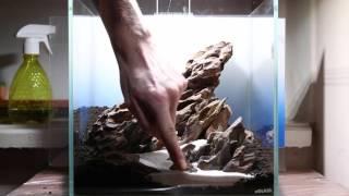 Aquascape -