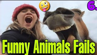 Funny Animals Fails Compilation 6 | Epic Video | Try Not To Laugh Challenge 2020 | #FunnyViralMedia