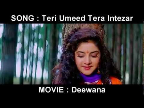 Teri Umeed Tera Intezar Song Lyrics