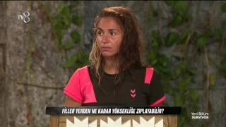 Yarışmacıların Kafasını Karıştıran Fil Sorusu | Bölüm 18 | Survivor 2017
