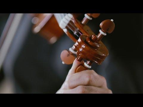 Auroventi - E.F. Dall'Abaco con violino costruito da Lorenzo Cassi