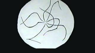 Unique Hand Drawn Animation