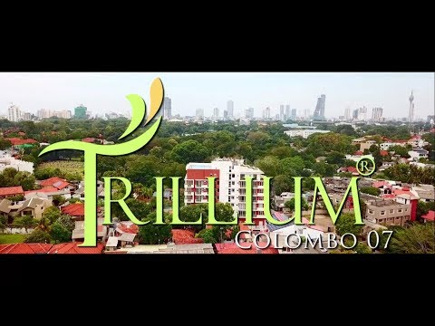 Trillium Colombo 7