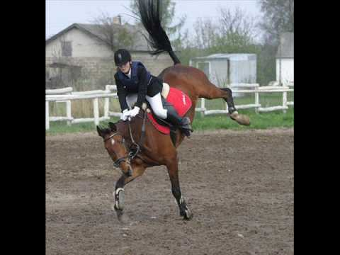 Horse Bucking HUGE After 4' Jump Clip
