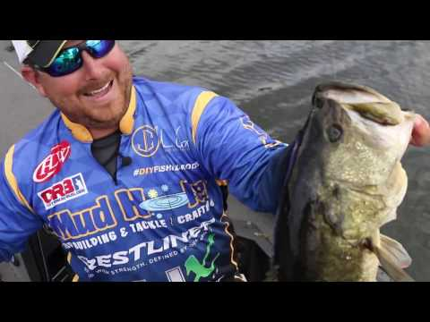 Florida Shiner Fishing With John Cox