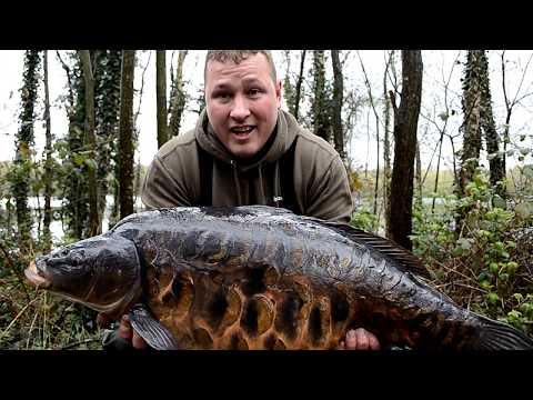 Sandhurst Series Pt1# Monster Fish (Is This The Best Looking Carp In England)