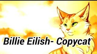 Коты воители клип - Billie Eilish-Copycat (Читать описание)