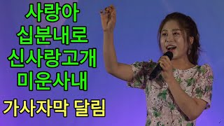 미스트롯 *김소유 최근공연 - 사랑아+십분내로+신사랑고개+미운사내 풀영상 가사자막