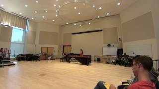 Marimba Concerto / Jorge Sarmientos