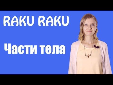 Футурама - 7 сезон смотреть онлайн на русском языке в HD