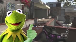 COD Black Ops 2 - Voice Trolling! (Kermit The Frog vs Gangster Kid)