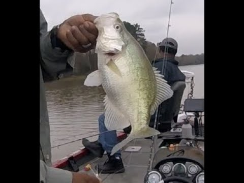 Locating Nice Crappie In Open Water On Lake Houston On Hooked Up Fishing With The Crappie Hunter