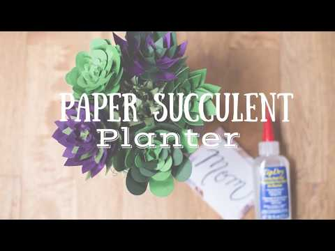 Paper Succulent Planter