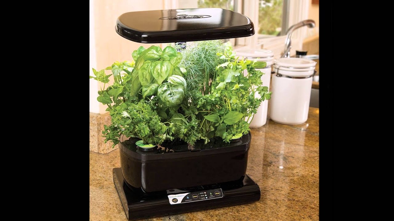 Miracle-Gro AeroGarden Harvest on SALE at BEST PRICE with ...