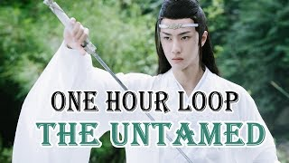 【陈情令 The Untamed】王一博 Wang Yi Bo《无羁》Wu Ji [One Hour Loop]