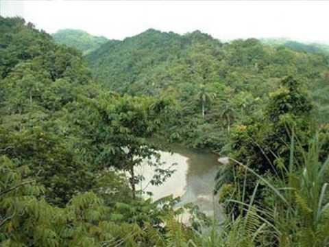 CUBA-Parque Nacional Alejandro de Humboldt (Cuba).WMV