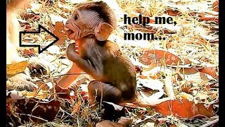 Oh no...!Poor Eleno almost got stuck food,Innocent baby Eleno scare beg mom,please help Him