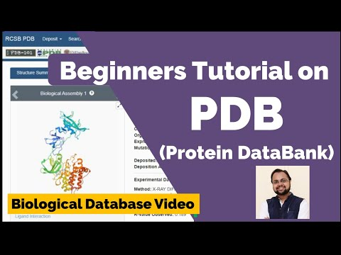 PDB Database Tutorial- A Beginners Guide