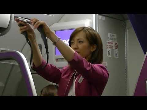 素敵なキャビンアテンダント フライトアテンダント 客室乗務員 Peach PeachAviation LCC Narita International Airport (Airport)