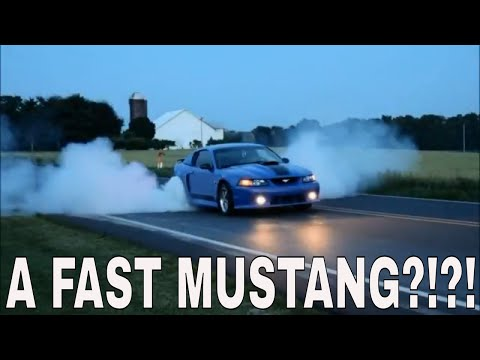 This Might Be The Fastest Mustang On The Street!