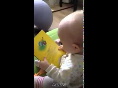 Lisa St. Regis - Baby Reads Book For Adorable Storytime