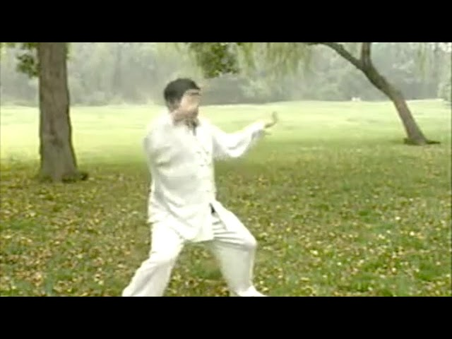 Zhu Lao Hu - Tai Chi style Chen Laojia Yilu [陈氏太极拳老架 Taijiquan style Chen]