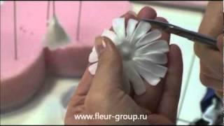 видео Орхидея из холодного фарфора