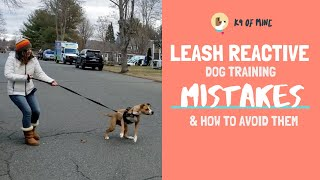 5 Things NOT To Do With Leash Reactive Dog Training!
