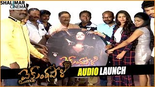Vaikuntapali Movie Audio Launch || Shalimarcinema