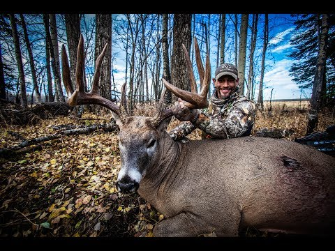 Giant 181-inch Alberta Buck With A Bow