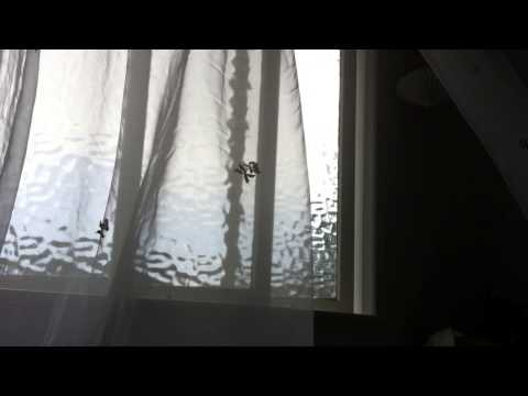 Curtains playing in the wind...
