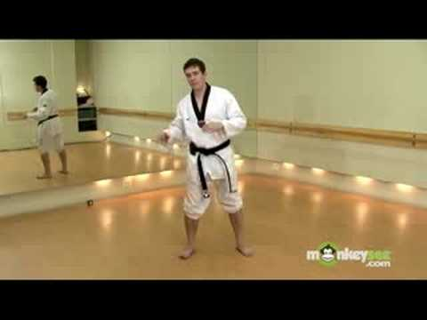 Olympic Taekwondo Fighting Stance and Foot Work