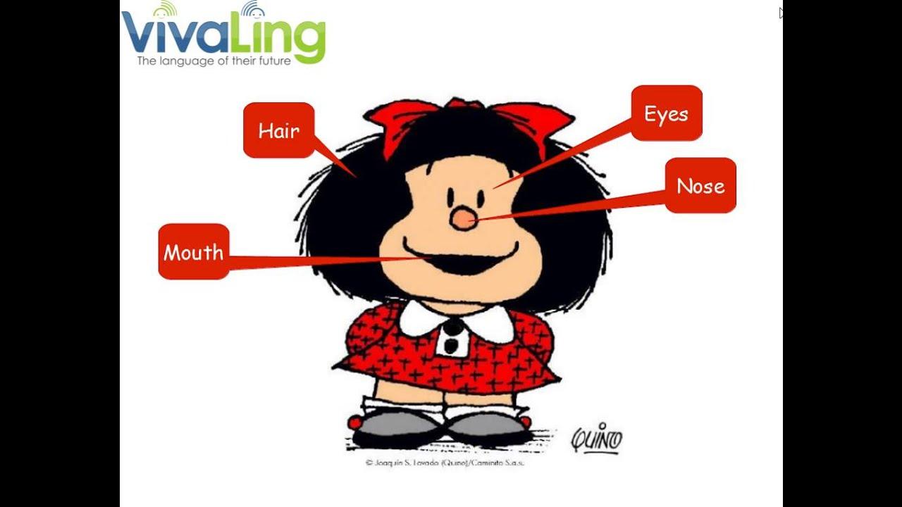 apprends le vocabulaire du visage en anglais