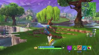 Fortnite: The game lost due to a bug.