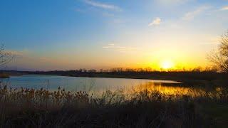 На что клюет карась весной Рыбалка на карася Рыбалка на донку Ловля карася в марте Рыбалка 2020