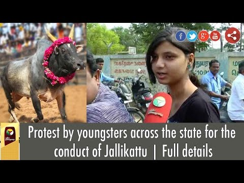 Protest by youngsters across the state for the conduct of Jallikattu | Full details