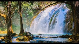 """Peaceful Relaxing Instrumental Music, Meditation Nature Music  """"The Magic of Spring"""" by Tim Janis"""