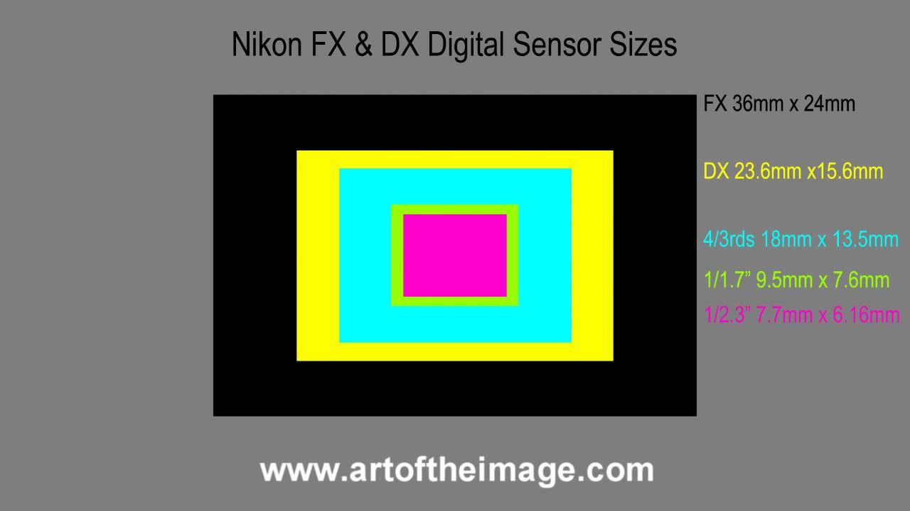 Nikon Fx And Dx Dslr Digital Camera Sensor Sizes Explained Compact Digital Cameras Too Youtube