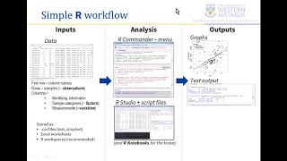 Learning R 08 - summary & simple R workflow