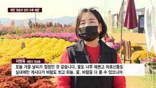 "CCS충북방송 1030 제천시..""예쁜 꽃 가져하세요""…"