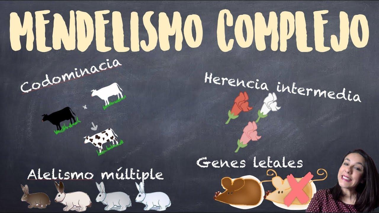 Genética mendeliana compleja: Herencia intermedia, codominacia, genes letales y alelismo múltiple