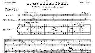 Beethoven - Piano Trio in C minor (op.1 no.3) 1/3