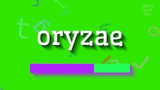 """How to say """"oryzae""""! (High Quality Voices)"""
