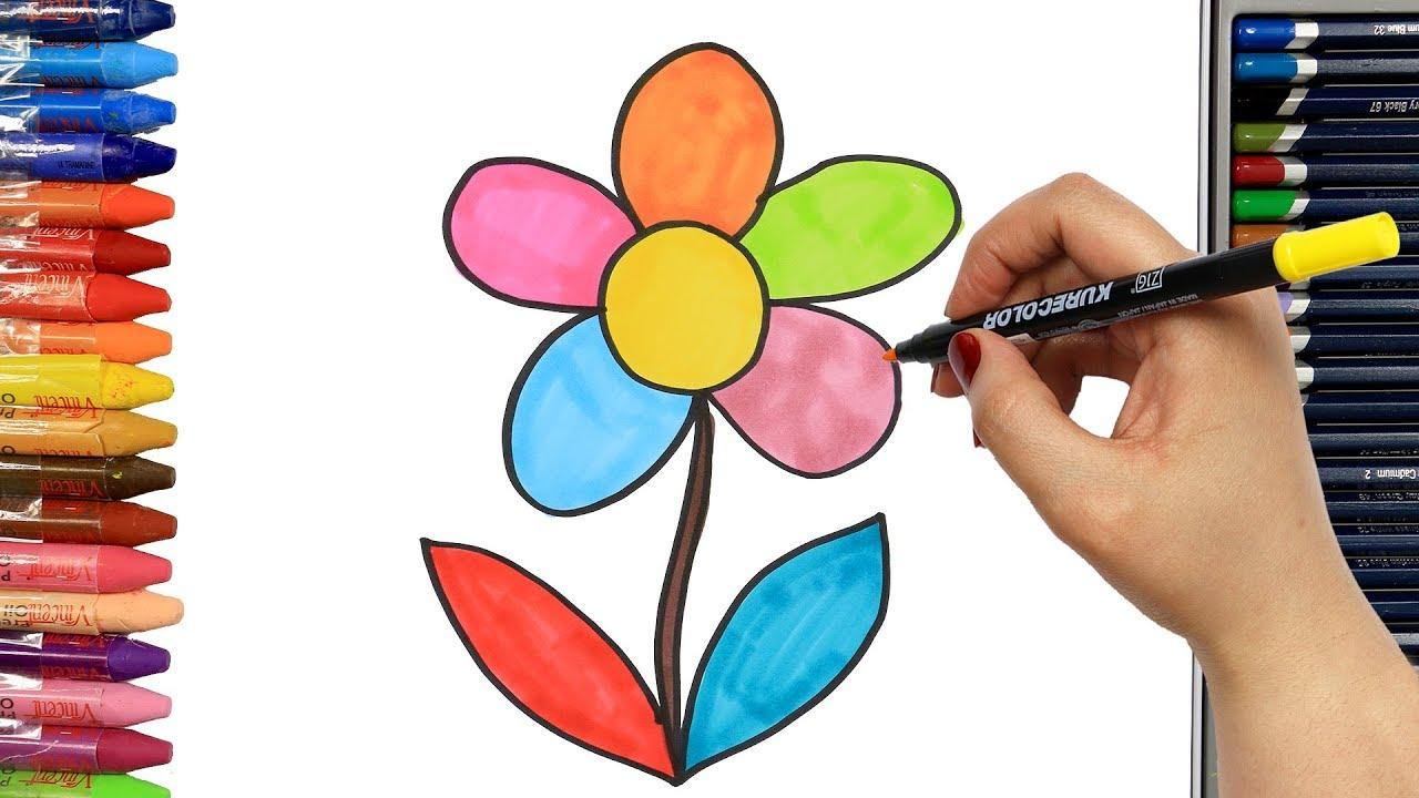 Come Disegnare E Colorare Fiore Colorato Colori Disegnare Come