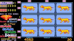 New Fruit Bonus '96 Special Edition - Diamond Dog (Cachorrinho) - Download