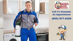 Hillsboro Rodent Removal | Hillsboro Rodent Exterminator | Rodent Pest Control Services