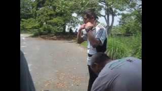 2012-6-3懐古登山④太閤ケ平から帰り