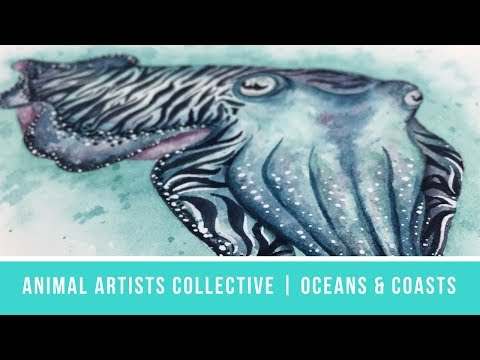 Animal Artists Collective: Oceans & Coasts | Cuttlefish in Daniel Smith Primatek Watercolors